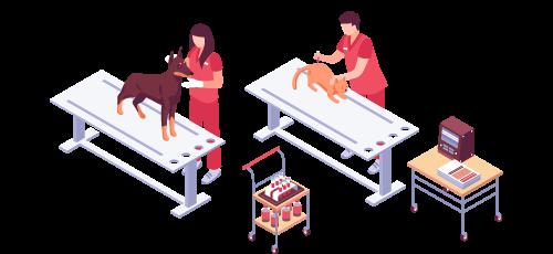 medicina_veterinaria