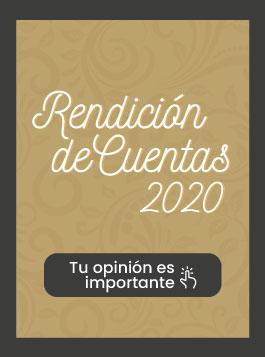rendicion-de-cuentas-2020 (1)